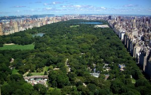 04 Central Park