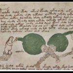 Grandi Misteri-Voynich-Il-manoscritto-incomprensibile