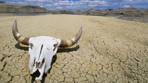 05 - Death-Valley-National-Park-California