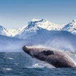 le destinazioni top dei viaggi più belli del mondo: Alaska