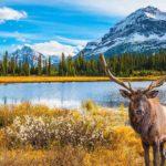 le meravigliose destinazioni dei viaggi più belli del mondo: Canada