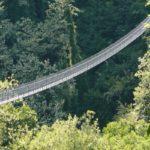 i ponti più lunghi del mondo - ponte sospeso delle ferriere